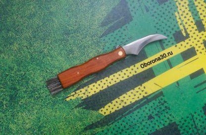 """Инструменты/аксессуары """"Нож грибника"""" складной с щёточкой."""